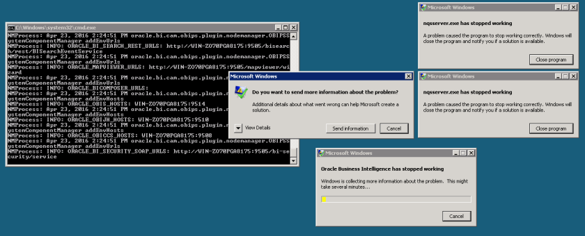 nqsserver.exe has stopped working and Oracle Business Intelligence has stopped working